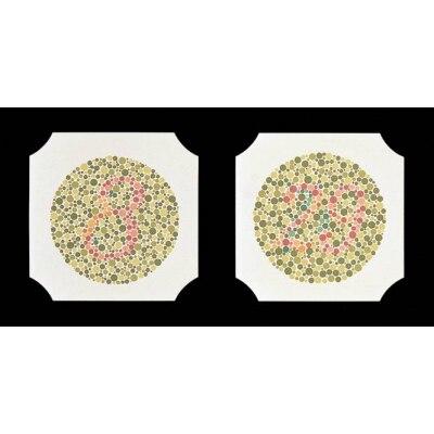 Farbtafeln Ishihara, 24 Tafeln