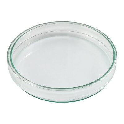 Petrischale - Doppelschale nach Petri aus Glas, Ø 15 cm